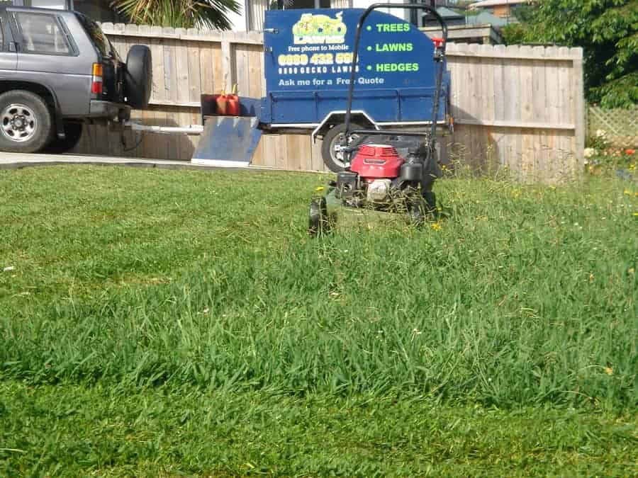 How Much Does It Cost To Set Up A Lawn Care Business Lawnmowing